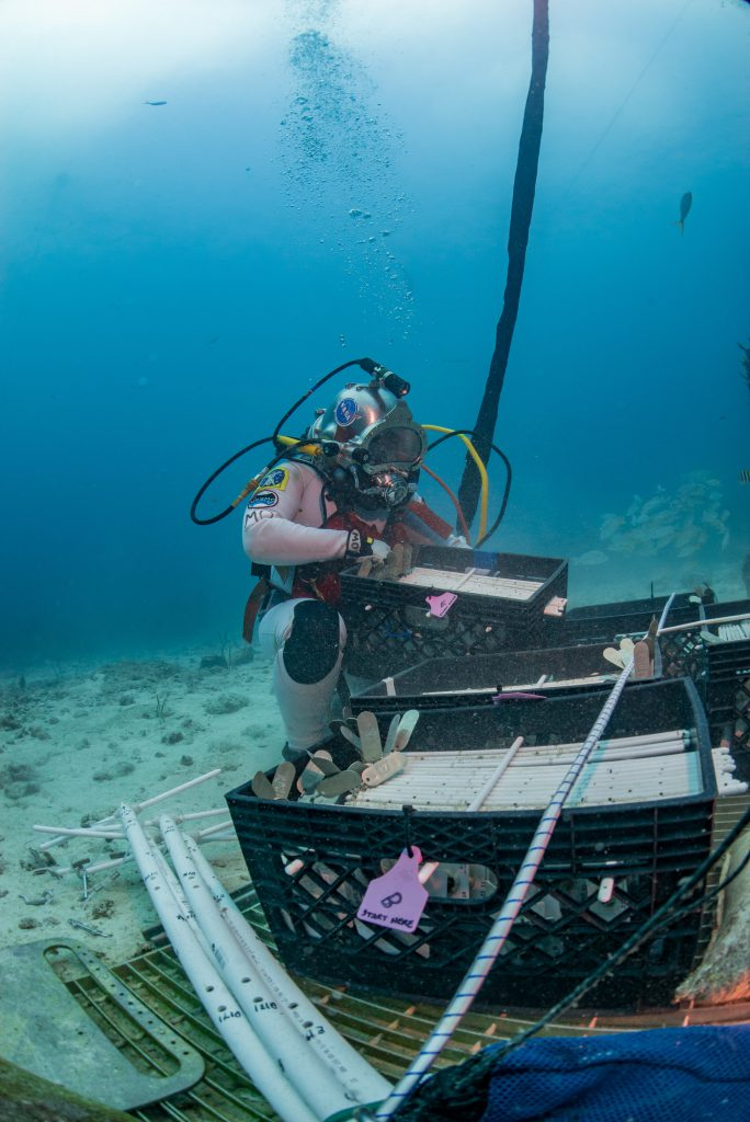 Marc O Griofa collecting tools for building a coral nursery tree